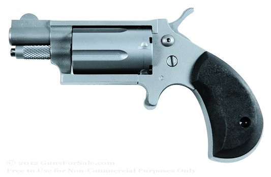 Charter Arms Dixie Derringer